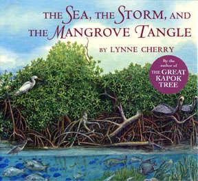 Mangrove72dpico-330