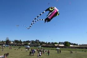 041716-SM-Kite-Festival-630x420_628_419_c1