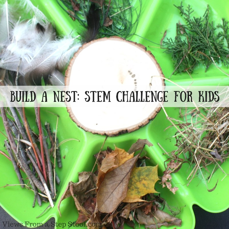 Build-a-Nest_-STEM-Challenge-for-Kids